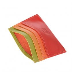 Dudubags - Porte-cartes Colorful Svalbard (534-492)